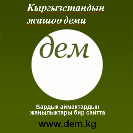 """Марат Токоев: """"ДЕМ"""" сайтынан бир эле мезгилде кырктан ашуун гезит, сайттардын материалдарын окуса болот"""