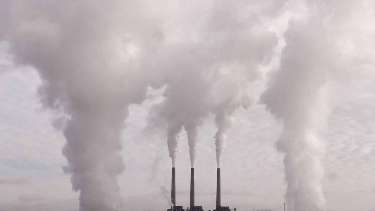Эколог-журналисттер көбөйсө, айлана-чөйрө корголот